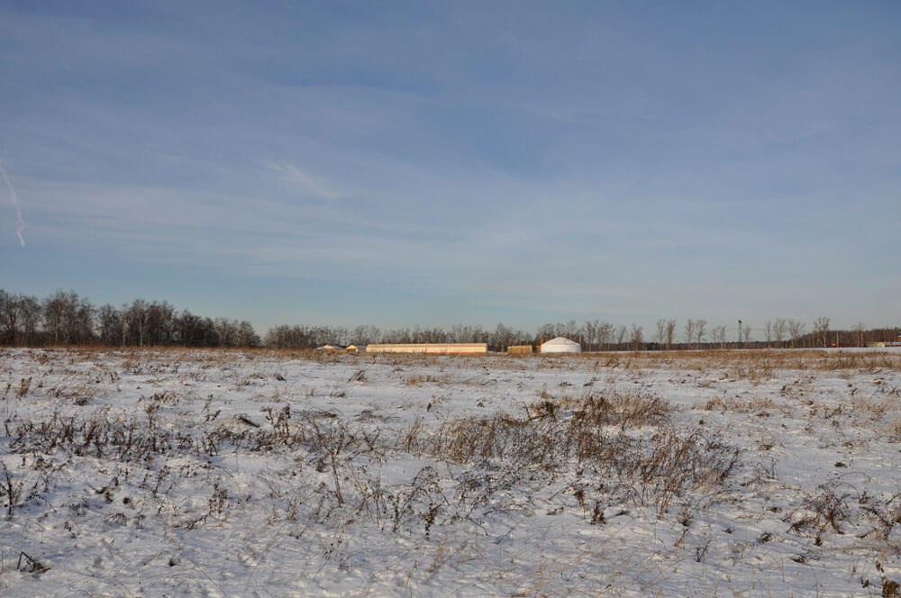 Это юрта там в середине, справа от неё сарайчик, а слева— хищнарий, там ловчие птицы живут.