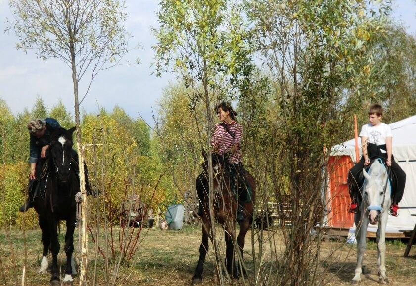 Конные прогулки в экопарке Сокольник